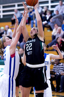 Glenbard West vs Wheaton North Basketball Feb 15